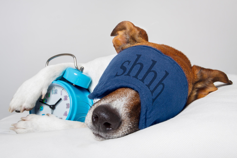 Feeling Tired?  10 Tips for Better Sleep